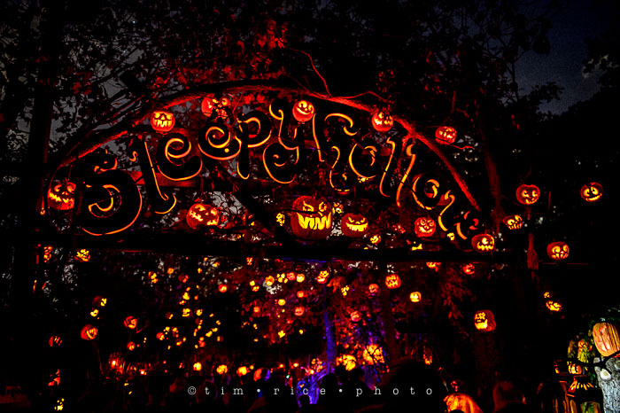 Yr7•038-365•2204•Jack O'Lantern Spectacular