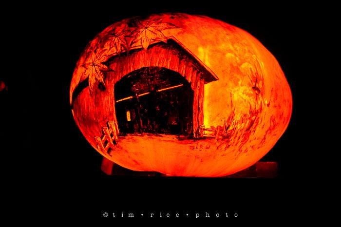 Yr7•041-365•2204•Jack O'Lantern Spectacular