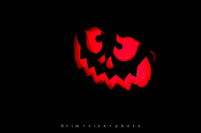 Yr7•047-365•2204•Jack O'Lantern Spectacular