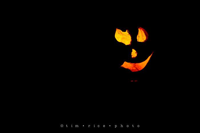 Yr7•055-365•2204•Jack O'Lantern Spectacular