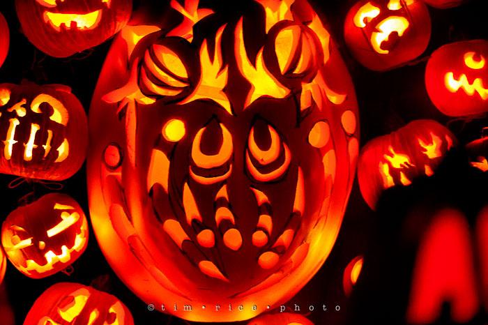 Yr7•058-365•2204•Jack O'Lantern Spectacular
