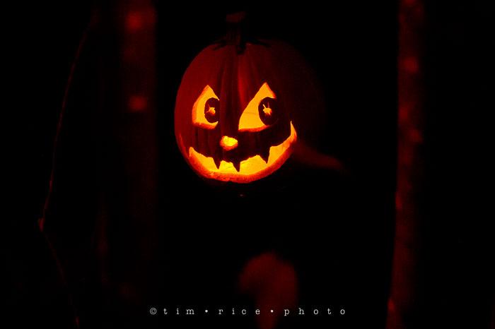 Yr7•068-365•2204•Jack O'Lantern Spectacular