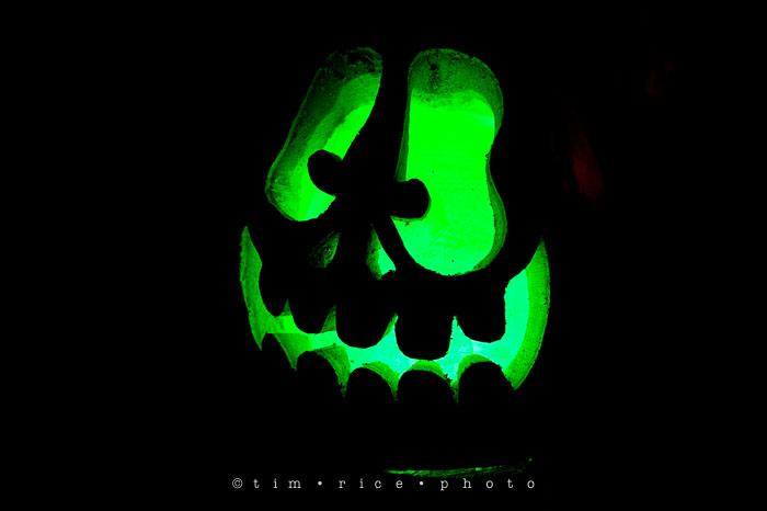 Yr7•079-365•2204•Jack O'Lantern Spectacular