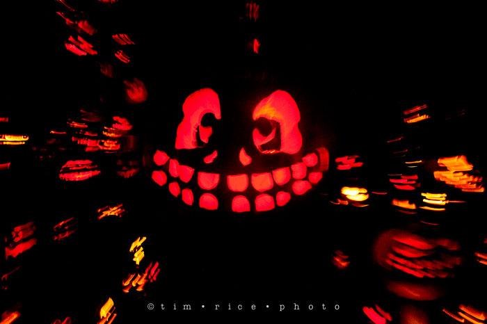 Yr7•085-365•2204•Jack O'Lantern Spectacular