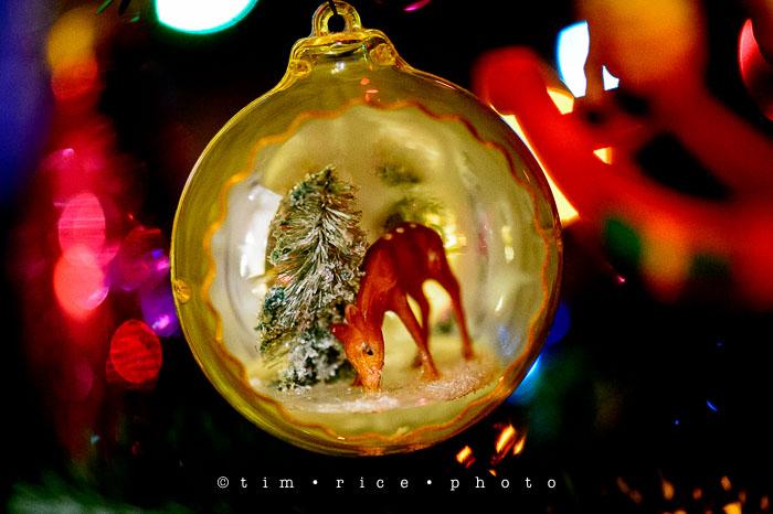 Yr7•088-365•2277•Christmas