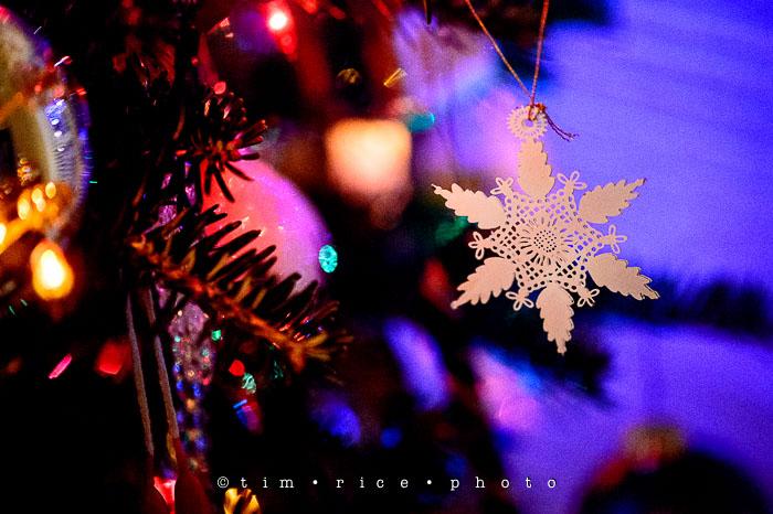 Yr7•091-365•2277•Christmas