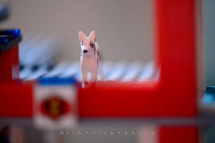 Yr7•123-366•2313•Lego Finn