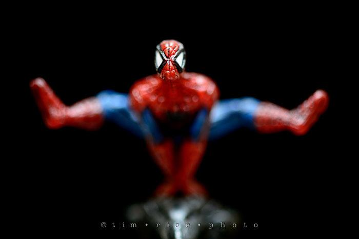 Yr7•134-366•2324•Spider v. Bat