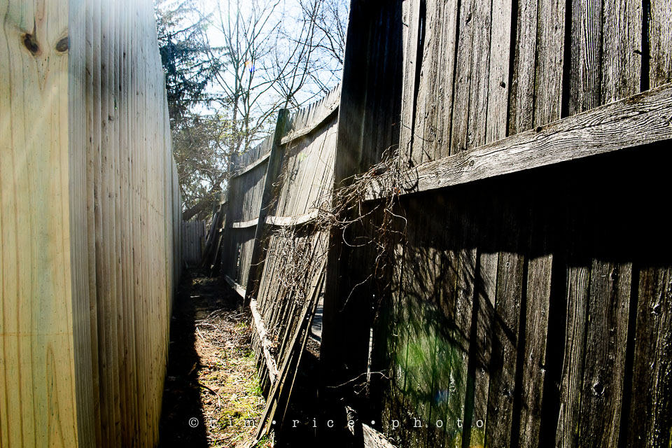 Yr7•198-366•2389•Unvieling Fence
