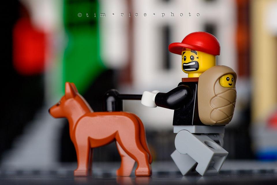 Yr7•210-366•2401•Legoboy Busy