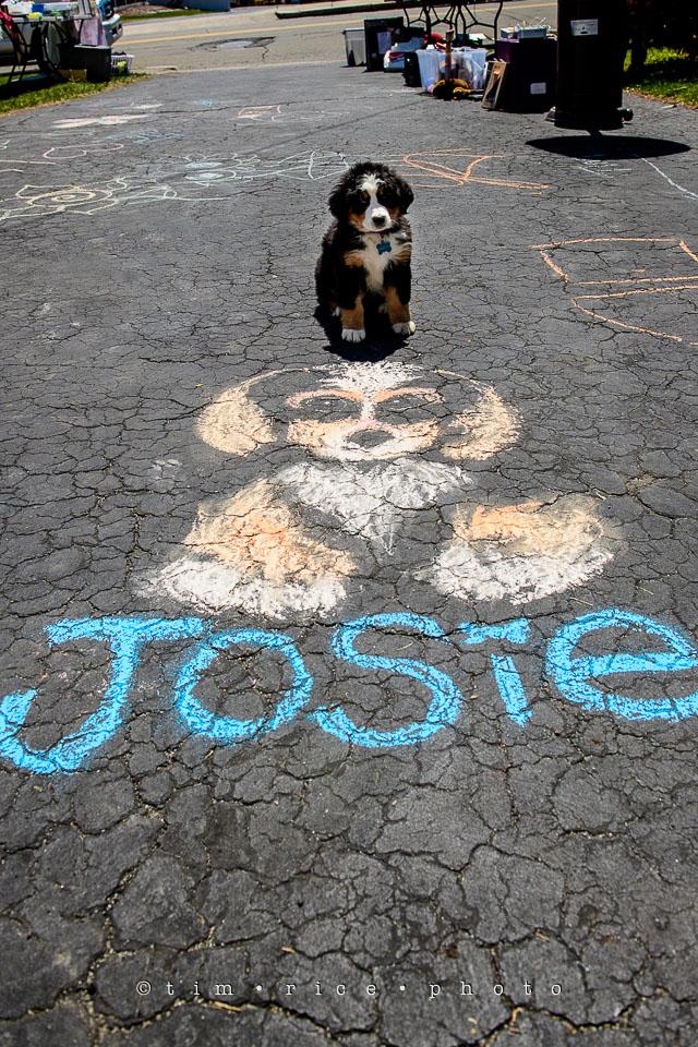 Yr7•214-366•2404•Joise's Art