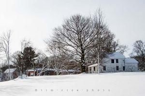 Yr4•003-365•Snow.jpg