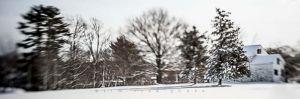 Yr4•013-365•Snow.jpg