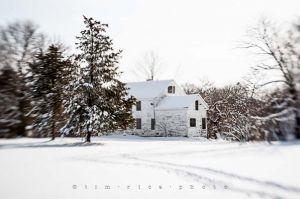 Yr4•016-365•Snow.jpg