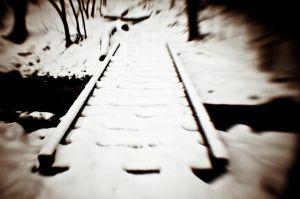 2011_01_08.jpg