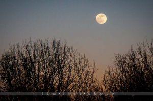 13-120206_Moon_004.jpg
