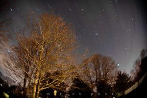 c2-20120217-120217_Star Trails_006.jpg