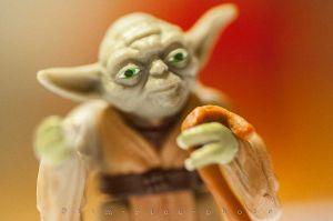 20120504-120504_Yoda_086.jpg