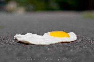 20110721-110721_Egg_007.jpg