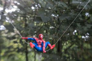 20110810-110807_Spiderman_037.jpg