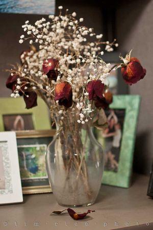 20110902-110902_Flowers_002.jpg