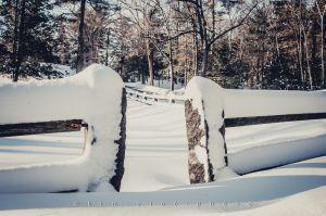 130210_SnowSundayDrive_037.jpg