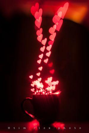 130214_Hearts_047.jpg