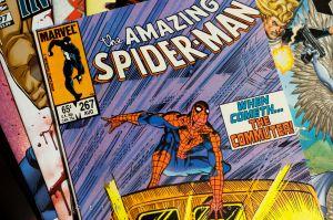 c64-121114_Spiderman267_004.jpg